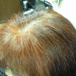 天然100%ヘナ毛